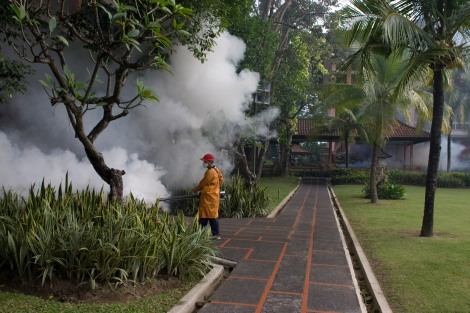 Fogging to prevent dengue and other diseases with mosquitoes as transmitting agent. Provincial Health Office of Bali regularly conducts fogging for the capital of the province, Denpasar. 18/06/2011. WHO/Budi Chandra.